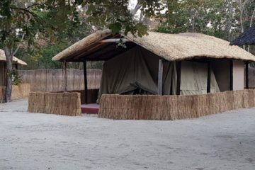 hwange camp